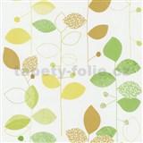 Papírové tapety na zeď X-treme Colors - listy zeleno-hnědé