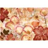 Vliesové fototapety květy 366 x 254 cm
