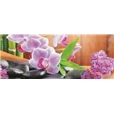 Vliesové fototapety orchidej s kameny