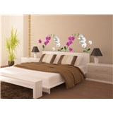 Samolepky na zeď orchidej