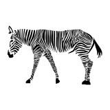 Samolepky na zeď zebra