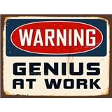 Retro cedule Warning Genius at Work 40 x 30 cm