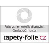 Vliesové tapety Sinfonia - bambusové listy na hnědo-fialovém podkladu - SLEVA